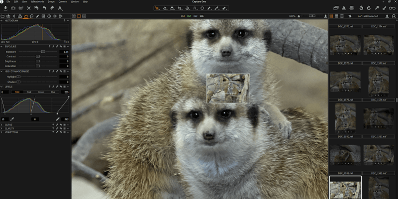 Capture One Pro Review